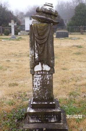 WILLIAMSON, CARRIE - East Carroll County, Louisiana | CARRIE WILLIAMSON - Louisiana Gravestone Photos