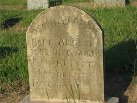 ST ANDRIE, JOSEPH - Grant County, Louisiana | JOSEPH ST ANDRIE - Louisiana Gravestone Photos