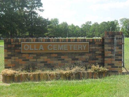 * OVERVIEW,  - La Salle County, Louisiana |  * OVERVIEW - Louisiana Gravestone Photos