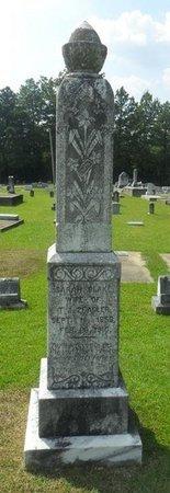 ZEAGLER, SARAH JANE - La Salle County, Louisiana | SARAH JANE ZEAGLER - Louisiana Gravestone Photos