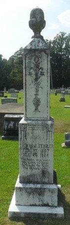 ZEAGLER, THOMAS J. - La Salle County, Louisiana | THOMAS J. ZEAGLER - Louisiana Gravestone Photos