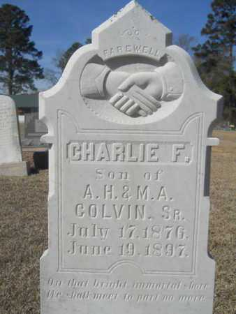 COLVIN, CHARLIE F - Lincoln County, Louisiana | CHARLIE F COLVIN - Louisiana Gravestone Photos