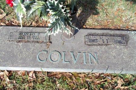 COLVIN, LILLIAN LIBB - Lincoln County, Louisiana | LILLIAN LIBB COLVIN - Louisiana Gravestone Photos
