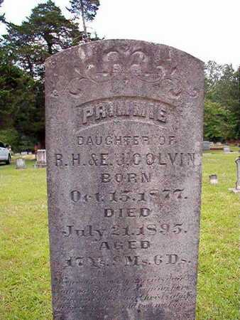 COLVIN, PRIMMIE - Lincoln County, Louisiana | PRIMMIE COLVIN - Louisiana Gravestone Photos