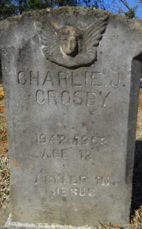 CROSBY, CHARLIE J - Lincoln County, Louisiana | CHARLIE J CROSBY - Louisiana Gravestone Photos