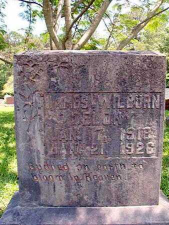 DELONY, JAMES WILBURN - Lincoln County, Louisiana | JAMES WILBURN DELONY - Louisiana Gravestone Photos