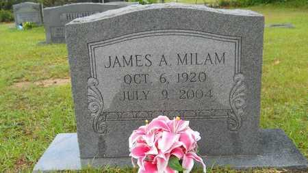 MILAM, JAMES A - Lincoln County, Louisiana | JAMES A MILAM - Louisiana Gravestone Photos