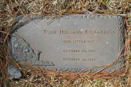 RICHARDSON, TODD HOLLAND - Lincoln County, Louisiana | TODD HOLLAND RICHARDSON - Louisiana Gravestone Photos