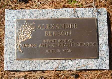 SPECTOR, ALEXANDER BENSON - Lincoln County, Louisiana | ALEXANDER BENSON SPECTOR - Louisiana Gravestone Photos