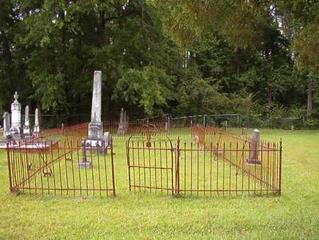 *VIENNA, CEMETERY (OVERVIEW) - Lincoln County, Louisiana   CEMETERY (OVERVIEW) *VIENNA - Louisiana Gravestone Photos