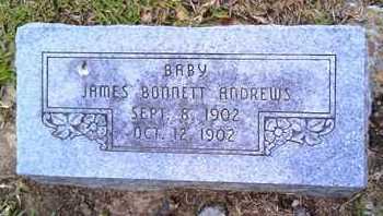 ANDREWS, JAMES BONNETT - Morehouse County, Louisiana | JAMES BONNETT ANDREWS - Louisiana Gravestone Photos