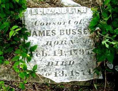 BUSSEY, ELIZABETH - Morehouse County, Louisiana   ELIZABETH BUSSEY - Louisiana Gravestone Photos