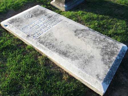 HERRING, ANDREW J - Ouachita County, Louisiana | ANDREW J HERRING - Louisiana Gravestone Photos