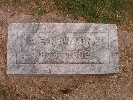 NAWADNY, A E - Ouachita County, Louisiana | A E NAWADNY - Louisiana Gravestone Photos
