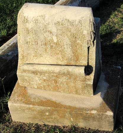 ROSS, JAMES NEWTON - Ouachita County, Louisiana   JAMES NEWTON ROSS - Louisiana Gravestone Photos