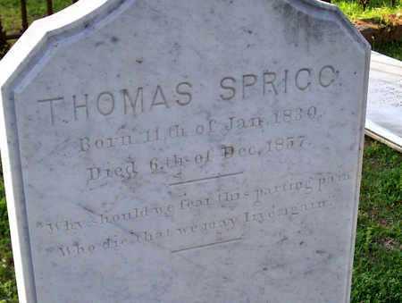 SPRIGG, THOMAS (CLOSEUP) - Rapides County, Louisiana | THOMAS (CLOSEUP) SPRIGG - Louisiana Gravestone Photos