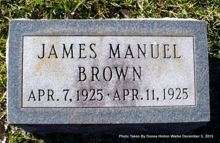 BROWN, JAMES MANUEL - Red River County, Louisiana | JAMES MANUEL BROWN - Louisiana Gravestone Photos