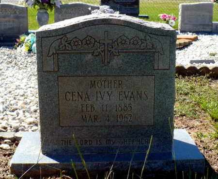 EVANS, CENA - Red River County, Louisiana | CENA EVANS - Louisiana Gravestone Photos
