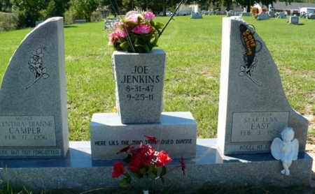 JENKINS, JOE - Red River County, Louisiana | JOE JENKINS - Louisiana Gravestone Photos
