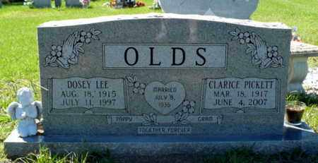 OLDS, DOSEY LEE - Red River County, Louisiana | DOSEY LEE OLDS - Louisiana Gravestone Photos