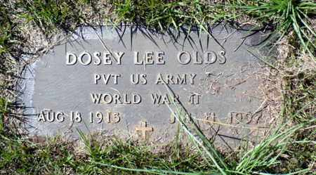 OLDS, DOSEY LEE (VETERAN WWII) - Red River County, Louisiana | DOSEY LEE (VETERAN WWII) OLDS - Louisiana Gravestone Photos