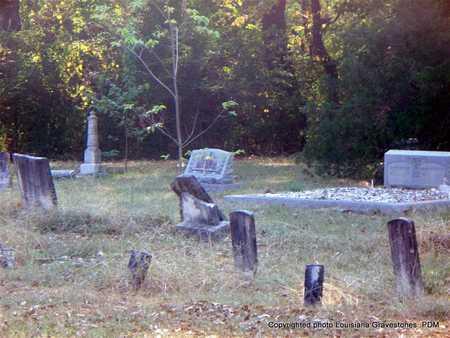 * OVERVIEW,  - St. Helena County, Louisiana |  * OVERVIEW - Louisiana Gravestone Photos