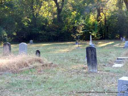 * OVERVIEW,  - St. Helena County, Louisiana |  * OVERVIEW - Louisiana Gravestone Photos