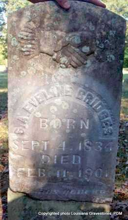 BRIDGES, S A EVALINE - St. Helena County, Louisiana | S A EVALINE BRIDGES - Louisiana Gravestone Photos