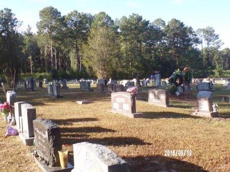 *, OVERVIEW - Union County, Louisiana | OVERVIEW * - Louisiana Gravestone Photos