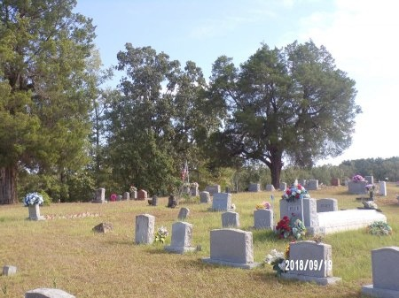 *, OVERVIEW - Union County, Louisiana | OVERVIEW * - Louisiana Gravestone Photos