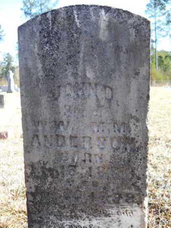 ANDERSON, JOHN D - Union County, Louisiana | JOHN D ANDERSON - Louisiana Gravestone Photos