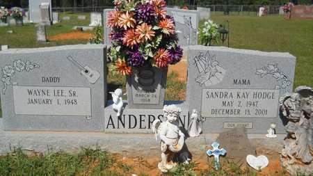 ANDERSON, SANDRA KAY - Union County, Louisiana | SANDRA KAY ANDERSON - Louisiana Gravestone Photos