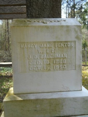 FENTON BAUGHMAN, NANCY JANE - Union County, Louisiana | NANCY JANE FENTON BAUGHMAN - Louisiana Gravestone Photos