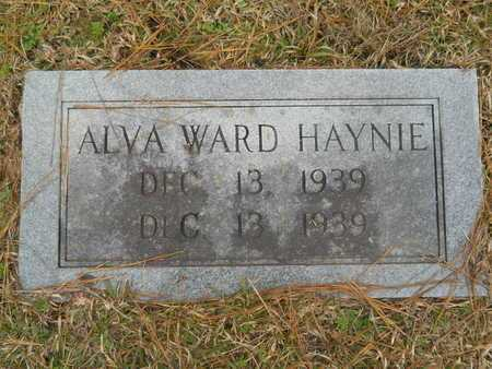 HAYNIE, ALVA WARD - Union County, Louisiana | ALVA WARD HAYNIE - Louisiana Gravestone Photos