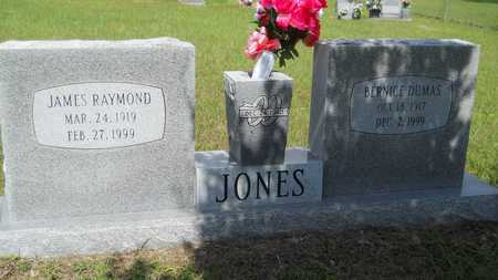 JONES, BERNICE - Union County, Louisiana | BERNICE JONES - Louisiana Gravestone Photos