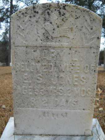 JONES, MARY L - Union County, Louisiana | MARY L JONES - Louisiana Gravestone Photos