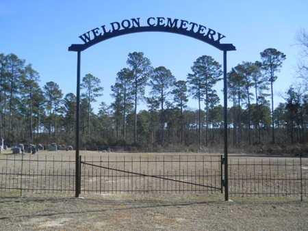 *WELDON CEMETERY, (GATE) - Union County, Louisiana | (GATE) *WELDON CEMETERY - Louisiana Gravestone Photos