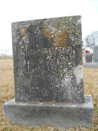 WILLIAMS, ANNIE - Union County, Louisiana   ANNIE WILLIAMS - Louisiana Gravestone Photos