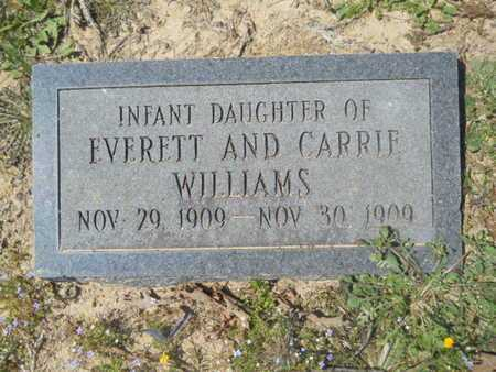 WILLIAMS, INFANT DAUGHTER - Union County, Louisiana | INFANT DAUGHTER WILLIAMS - Louisiana Gravestone Photos