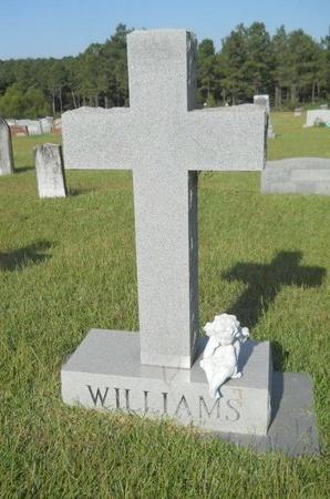 WILLIAMS, MEMORIAL - Union County, Louisiana | MEMORIAL WILLIAMS - Louisiana Gravestone Photos