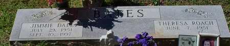 BATES, JIMMIE DALE - Washington County, Louisiana | JIMMIE DALE BATES - Louisiana Gravestone Photos