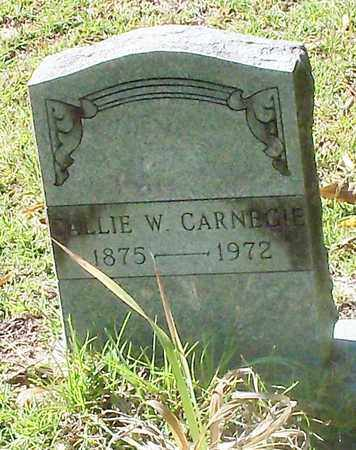 "WALLACE CARNEGIE, CAROLINE ""CALLIE"" - Washington County, Louisiana | CAROLINE ""CALLIE"" WALLACE CARNEGIE - Louisiana Gravestone Photos"