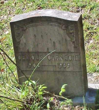 CARNEGIE, CELIOUS - Washington County, Louisiana   CELIOUS CARNEGIE - Louisiana Gravestone Photos