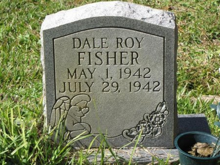 FISHER, DALE ROY - Washington County, Louisiana | DALE ROY FISHER - Louisiana Gravestone Photos