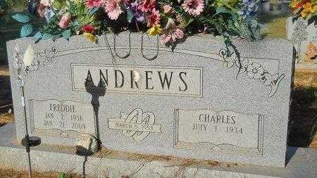 ANDREWS, FREDDIE - Webster County, Louisiana | FREDDIE ANDREWS - Louisiana Gravestone Photos