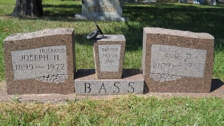 BASS, EVIE D - Webster County, Louisiana | EVIE D BASS - Louisiana Gravestone Photos