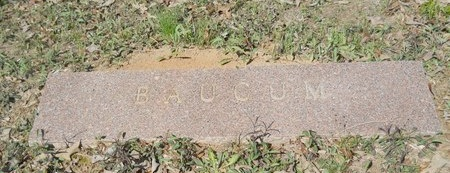 BAUCUM, MEMORIAL - Webster County, Louisiana | MEMORIAL BAUCUM - Louisiana Gravestone Photos