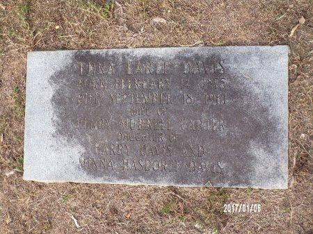 CARTER, EDNA EARLE - Webster County, Louisiana | EDNA EARLE CARTER - Louisiana Gravestone Photos