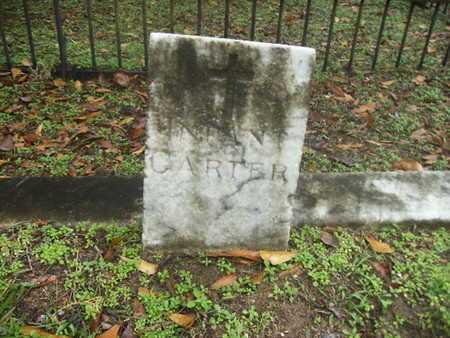 CARTER, INFANT - Webster County, Louisiana | INFANT CARTER - Louisiana Gravestone Photos