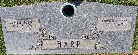 HARP, JOSEPH BRANT - Webster County, Louisiana   JOSEPH BRANT HARP - Louisiana Gravestone Photos